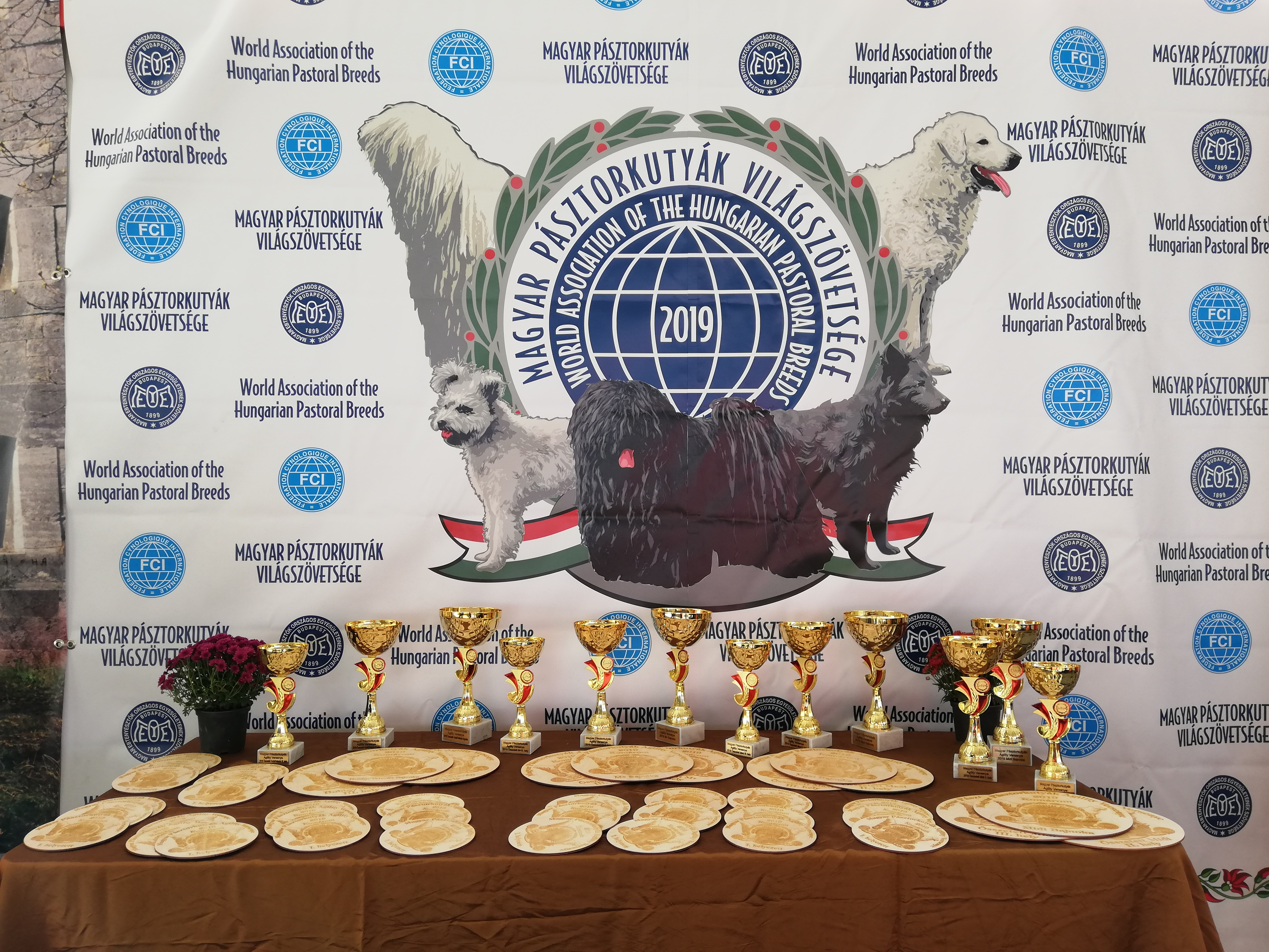 Lipicai Kupa - A Nemzeti Agility Bajnokság I. fordulója