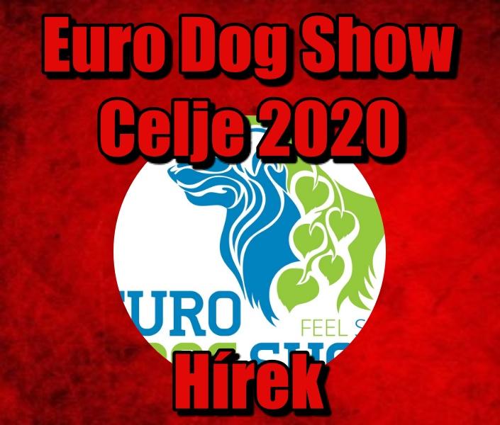 Europa Kutya kiállítás 2020