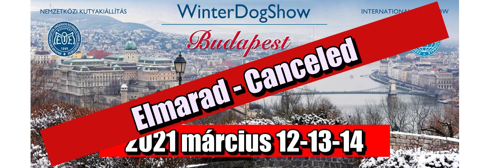 Elmarad a Winterdogshow kiállítás