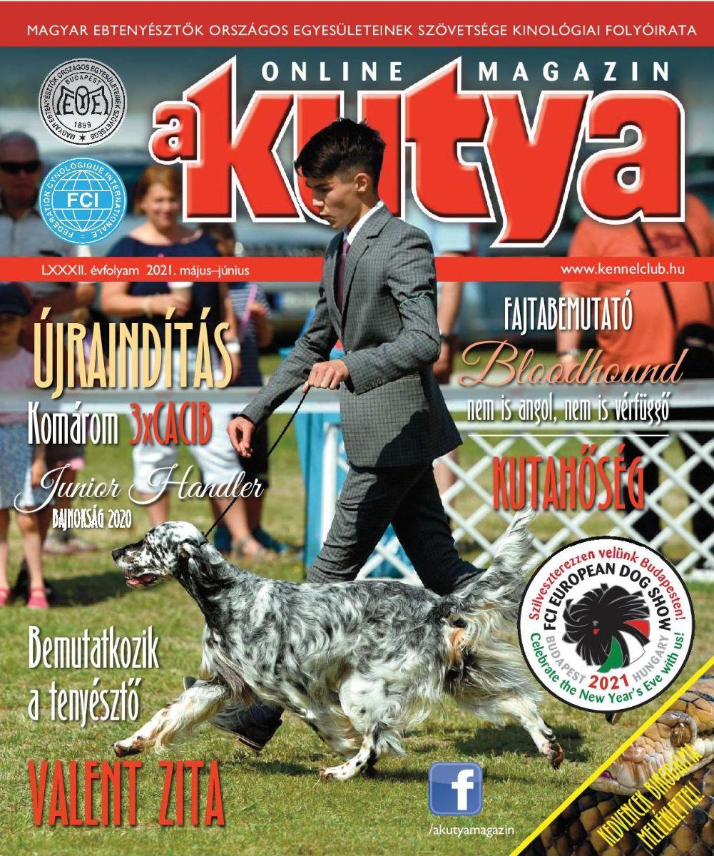 Akutya magazin